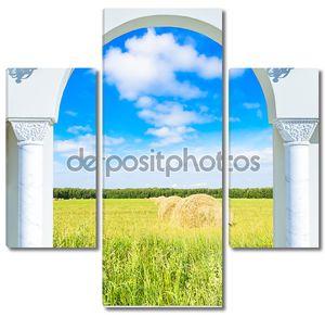 Вид из арки на поле