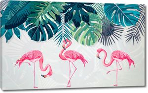 Фламинго в разных позах