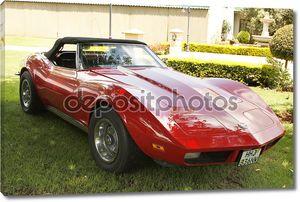 1973 ретро-автомобилей chevrolet corvette ската