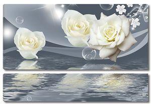 Розы. Отражение в воде