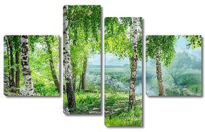 Березовый лес с рекой