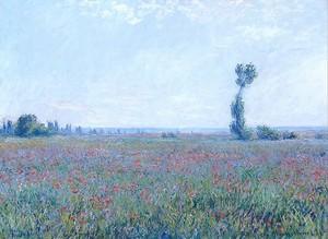 Моне Клод. Маковое Поле, 1881