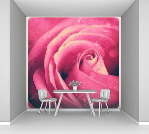 Сердцевинка розы