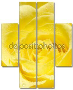 желтый повысился