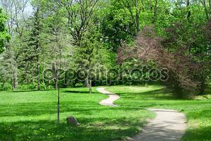 Зеленый парк весной
