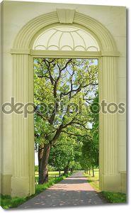 view through arched door, oak tree alley