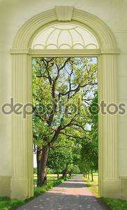 view through arched door, oak tree alley