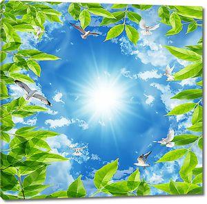 Небо в окаймлении из листьев