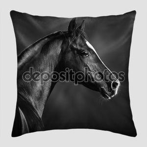 Портрет черной аравийской лошади