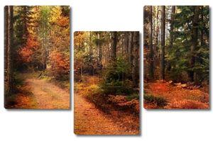 осенний лес Эстония