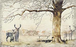 Рисунок оленей в парке