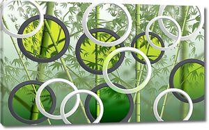 Бамбук сквозь прозрачные круги