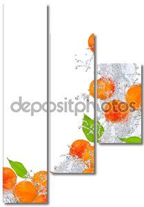 всплеск фрукты