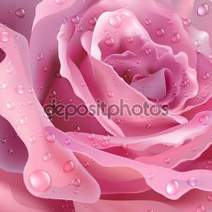 Роза. Векторный фон для вашего дизайна