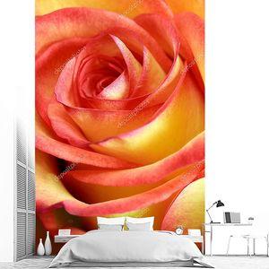 Одноместный красные и желтые розы