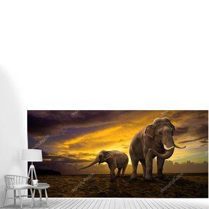 Семья слонов на закате