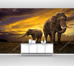 Семья слонов на фоне заката