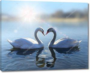Лебеди на голубое озеро воды в Солнечный день