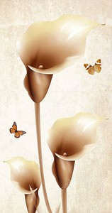 Три Каллы, две бабочки