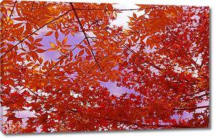 Медная листва