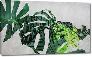 Абстракция из пальмовых листьев