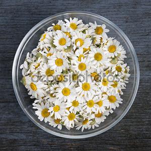 Цветы ромашки в миске