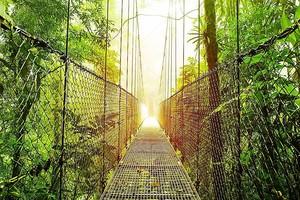 Аренал висячие мосты парк Коста-Рика