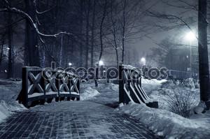 Зимний парк ночью.