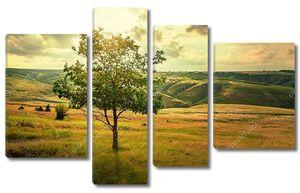 Одинокое дерево в летней степи красивый пейзаж