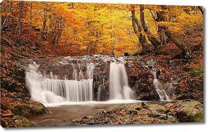 Бегущая вода в лесу