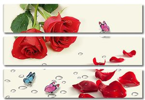 Две розы с осыпавшимися лепестками