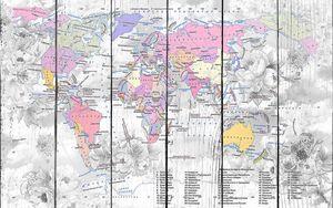 Цветная карта континентов