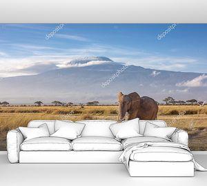 Слоненок в прерии