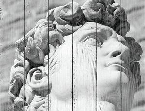 Черно-белая голова знаменитой статуи Давида