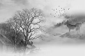 Волк в тумане