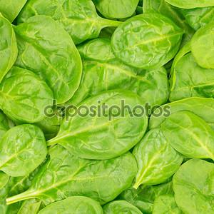 свежие органические baby шпинат фона или текстуры. сырье и продовольствия.