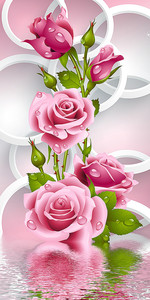Ветка розы и ее отражение