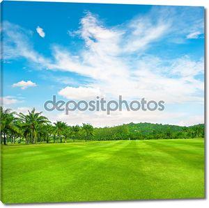 Зеленые гольф-поле с ладони на фоне пасмурное небо