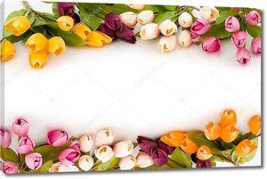Рама из красочных тюльпанов