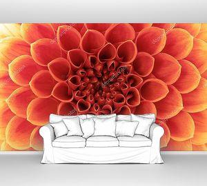 Цветок с красивыми лепестками