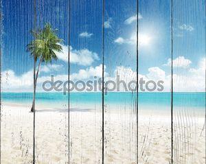 Одинокая пальма и море