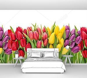 Свежие весенние цветы тюльпан вода капли цветочный баннер