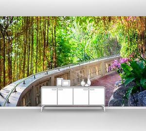 мирное сцена марочных лестницы в саду