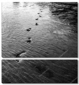 Следы в песке на северо-западе Франции монохромный