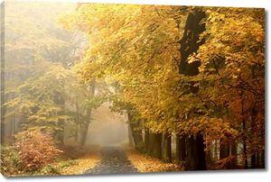 Осенний путь