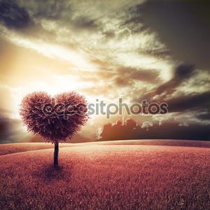 Аннотация поле с сердце форму дерева под голубым небом