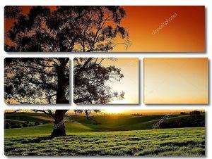 Красивый закат над  лугами