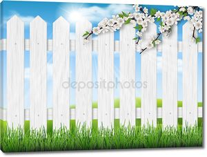 деревянный забор весна дерево трава