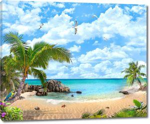Пляж моря