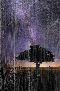 Саванны Африки ночное небо с Млечного пути